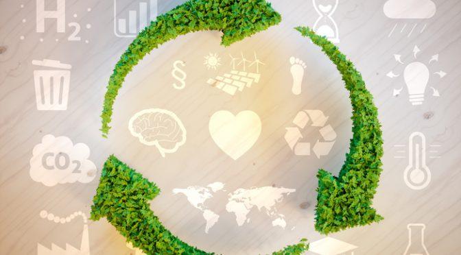 ¿Qué es la huella ambiental? ¿Cómo se diferencia de la huella ecológica? (Tec Review)