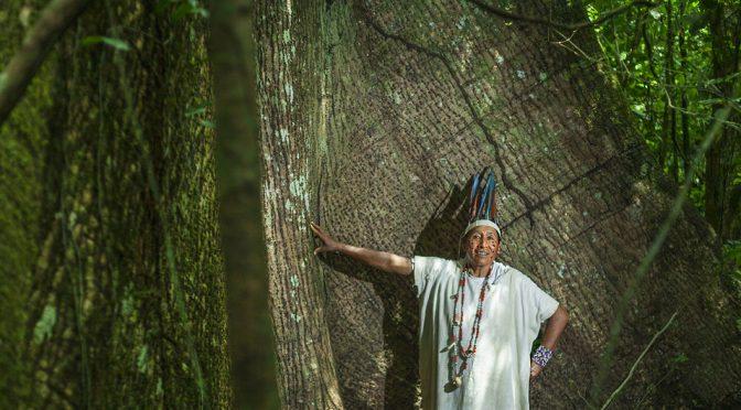 Perú: Los pueblos indígenas latinoamericanos sufren cada vez más presiones pese a su papel crucial contra el cambio climático (Noticias ONU)