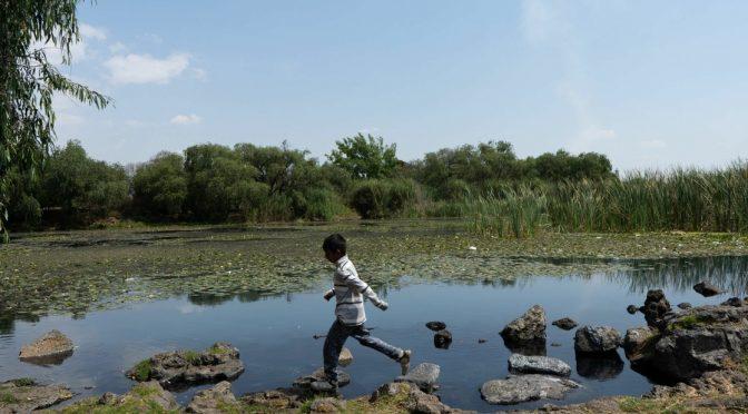 Michoacán: Reportan falta de agua en algunas colonias de Morelia (La Jornada)