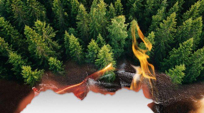 México: Aumenta el riesgo de incendios forestales (Gaceta U.N.A.M.)