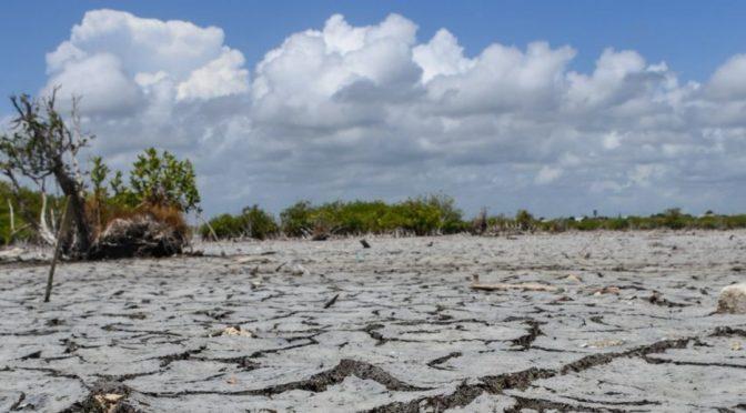 Hidalgo: Por falta de lluvia en Hidalgo la presa 'El Durazno' luce completamente seca (televisa.news)