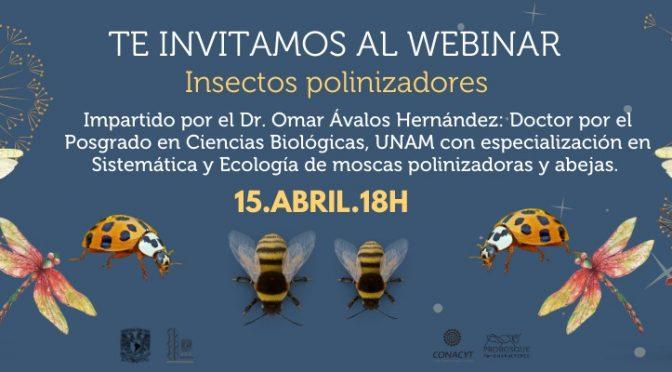 """Bosque de Chapultepec- Webinar Gratuito """"Insectos Polinizadores"""""""