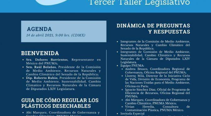 """Senado de la República- Tercer taller legislativo """"Hacia una regulación federal en materia de plásticos desechables"""""""