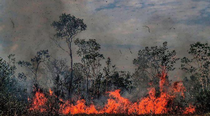 MX: Sofocada por incendios y sequía, así llega la CDMX al Día de la Tierra (Forbes México)