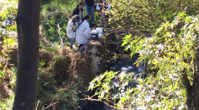 Alta probabilidad de padecer cáncer por contaminación del Atoyac-Zahuapan: Navarro (La Jornada Oriente)