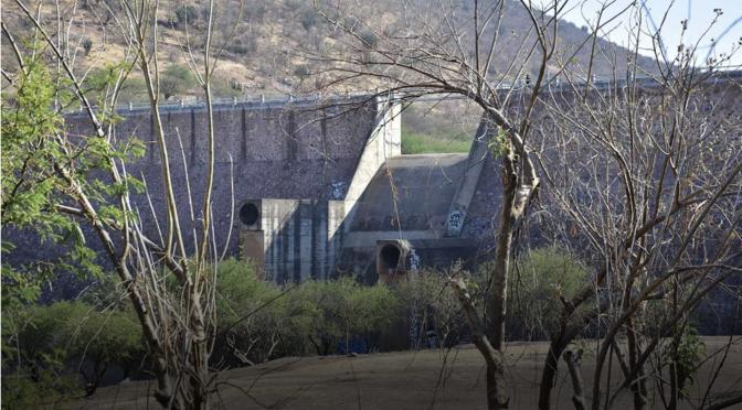 Gto: Golpea sequía a agricultores y ganaderos; desesperan lluvias que no llegan (Periódico Correo)