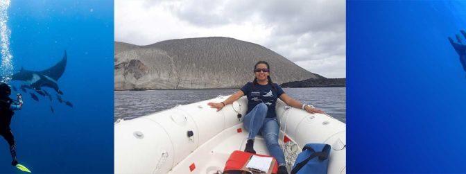 México: Analizan bioindicadores del estrés por buceo turístico en mantas gigantes (Portal Ambiental)