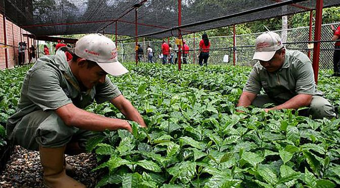 México: Debe la agroecología guiar al campo mexicano por desarrollo sustentable (DGS UNAM)