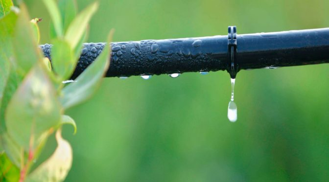 Madrid: Tecnología para rentabilizar la agricultura de precisión en pleno cambio climático (El Ágora Diario)