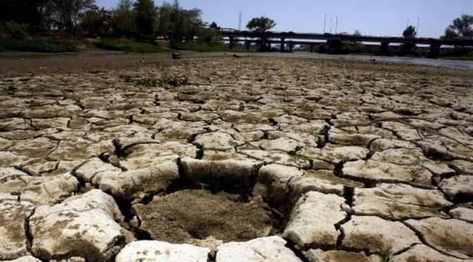 Tamaulipas: Señalan presunta ordeña de ductos de agua y pagos 'fantasma' a empresa de lácteos (El Financiero)