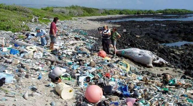 La actividad humana aumenta la contaminación de ambientes acuáticos (UNAM)