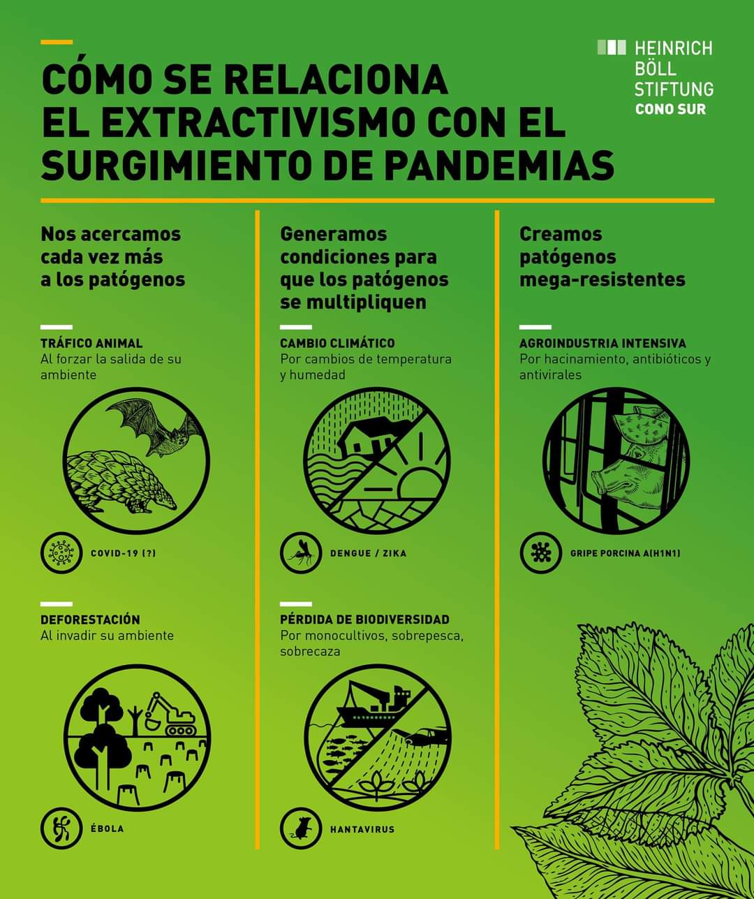 Cómo se relaciona el extractivismo con el surgimiento de pandemias (Infografía)