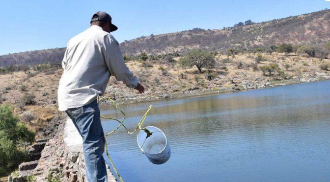 Gto: Alarma dramática baja en el nivel de cuerpos de agua de León (Periódico Correo)