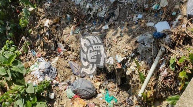 Ver: Aguas negras y desechos plásticos contaminan arroyo en Moloacán (Imagen de Veracruz)