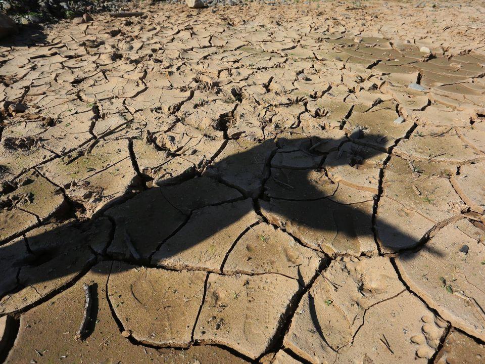 Países Bajos: El papel de la economía circular es crucial en la lucha climática (Portal Ambiental)