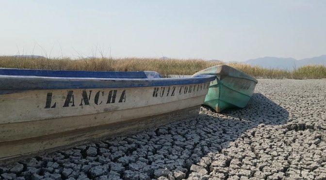 Mich: Lago Cuitzeo en Michoacán agoniza por sequía y urbanización (Uno tv)