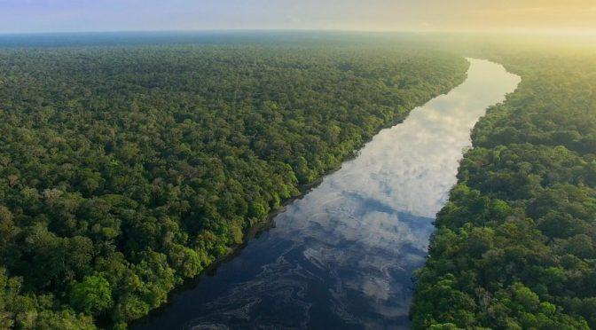 LATAM: Los 7 ríos más importantes de Latinoamérica (El Ágora Diario)