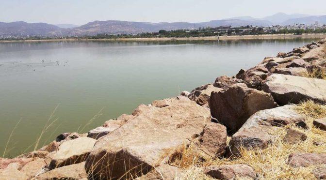 Gto: Sapal está a 1% de dejar de extraer agua de Presa del Palote (Milenio)