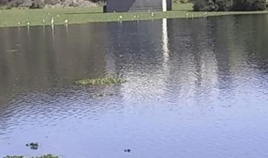 MX: Fortalecen aprovechamiento de volúmenes adicionales de la presa Madín (Portal Ambiental)
