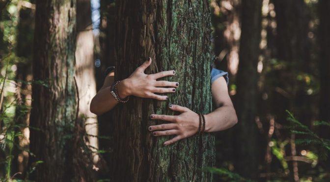 Mundo: ¿Qué es la ciudadanía ambiental? (Portal Ambiental)