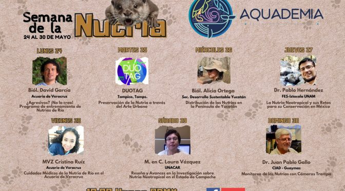 AQUADEMIA- Semana de la Nutria 🦦