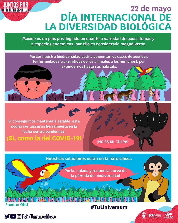 Día Internacional de la Diversidad Biológica (Infografía)