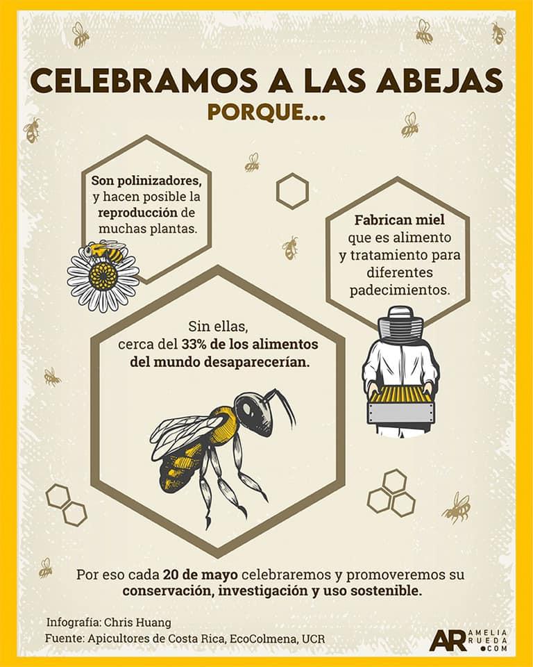 Día Mundial de las Abejas (Infografía)