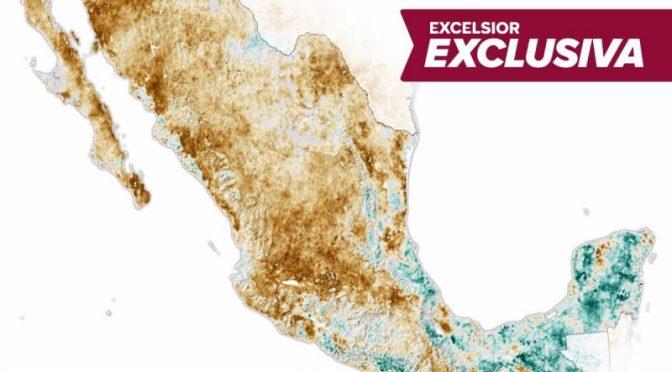 La sequía deshidrata a México, ¿qué puedes hacer para cuidar el agua? (Excelsior)