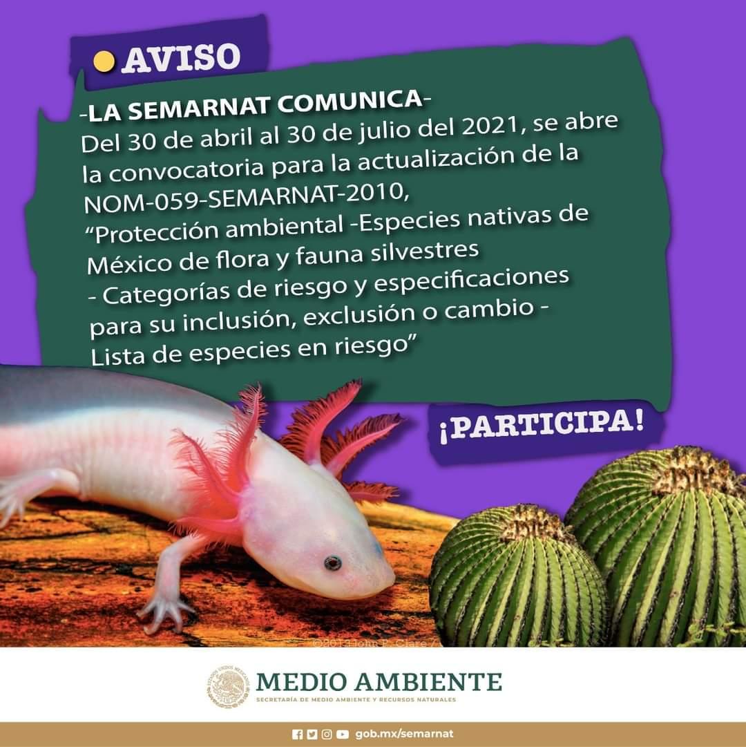 Convocatoria para la actualización de la Norma Oficial Mexicana NOM 059 SEMARNAT 2010