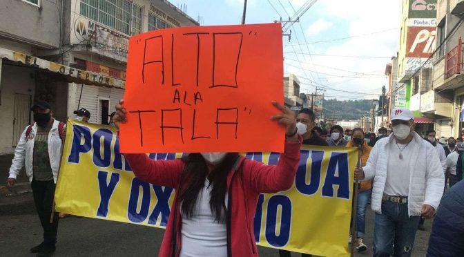 Edomex: Pobladores se unen contra los talamontes en Xalatlaco; exigen un alto a este delito (MSN.noticias)