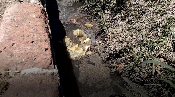 Gto: Exigen planta de tratamiento en Rincón de Tamayo tras contaminación de agua (Periódico Correo)