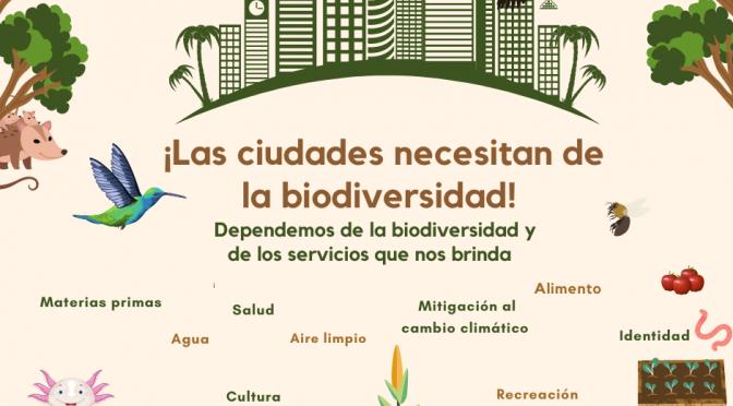 Ciudades y biodiversidad
