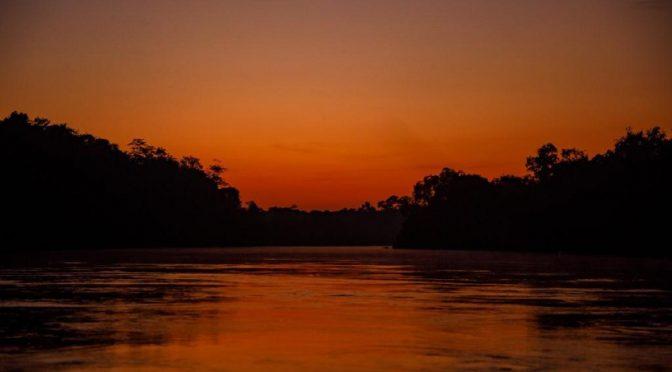 Colombia-Cuenca del río Tillavá, en el Meta, territorio diverso con más de 300 especies de fauna (SEMANA)