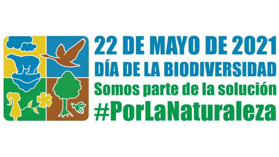 Mayo, mes de la biodiversidad  ¿Qué hace México por la biodiversidad?
