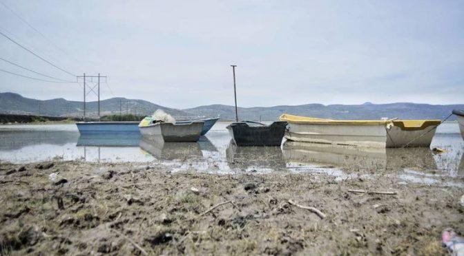 Mich: Buscan soluciones para salvar el lago de Cuitzeo (El Sol de Zamora)