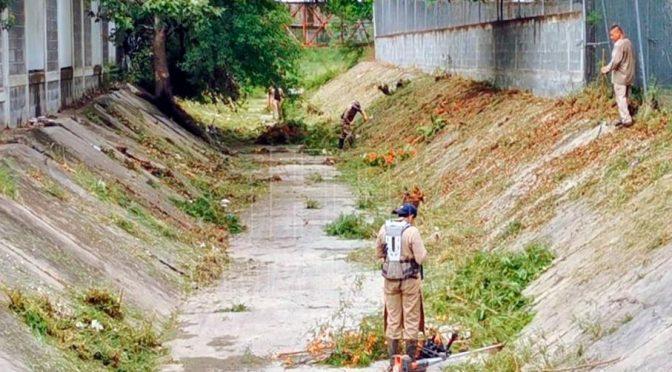 Tamaulipas-Previo a temporada de huracanes, inician limpieza a drenes pluviales de Ciudad Victoria (Hoy Tamaulipas)