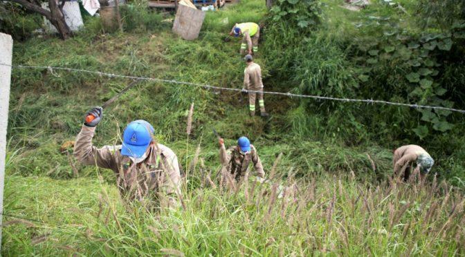 Gto: Sapal retira más de 17 mil toneladas de basura y maleza de cauces y arroyos (Caracol en Movimiento)