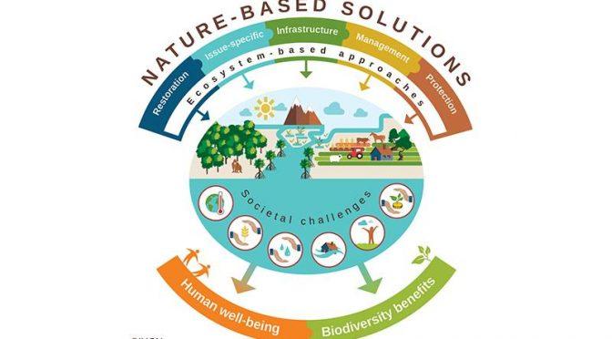 Soluciones Basadas en la Naturaleza