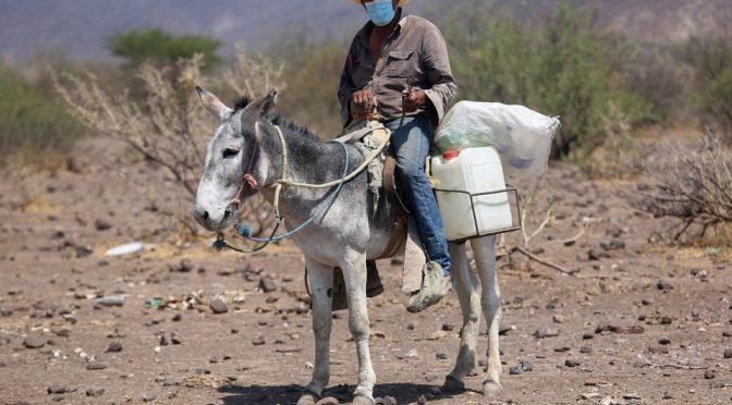 En Durango, temen por cuarta gran sequía (Milenio)