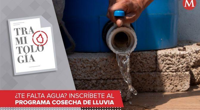 CDMX: ¿Te falta agua? Así puedes inscribirte al programa de Cosecha de Lluvia (Milenio)