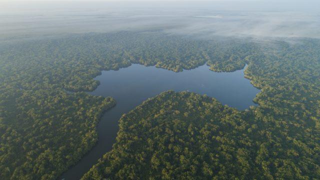 Artículo: Solo el 17% de los ríos de caudal libre están protegidos (WWF Noticias)