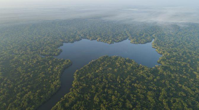 Solo el 17% de los ríos de caudal libre están protegidos (WWF Noticias)