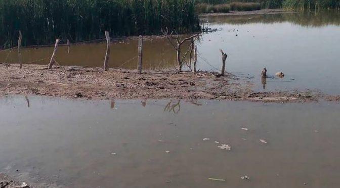 Morelos: Escombro y descargas contaminan la Laguna de Coatetelco (El Sol de Cuautla)