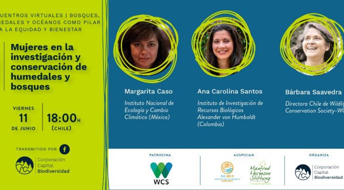 Encuentro Virtual – Mujeres en la investigación y conservación de humedales y bosques (Corporación Capital Biodiversidad)