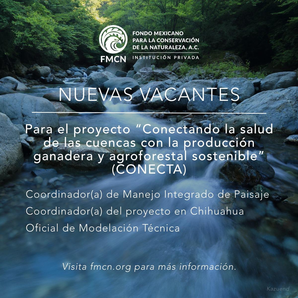 """Vacantes – """"Conectando la salud de las cuencas con la producción ganadera y agroforestal sostenible"""" (FMCN, INECC)"""