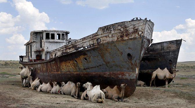 Mundo – La crisis climática está asfixiando los lagos del mundo, según un estudio (Alerta)
