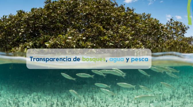 Transparencia y participación ciudadana para la sostenibilidad