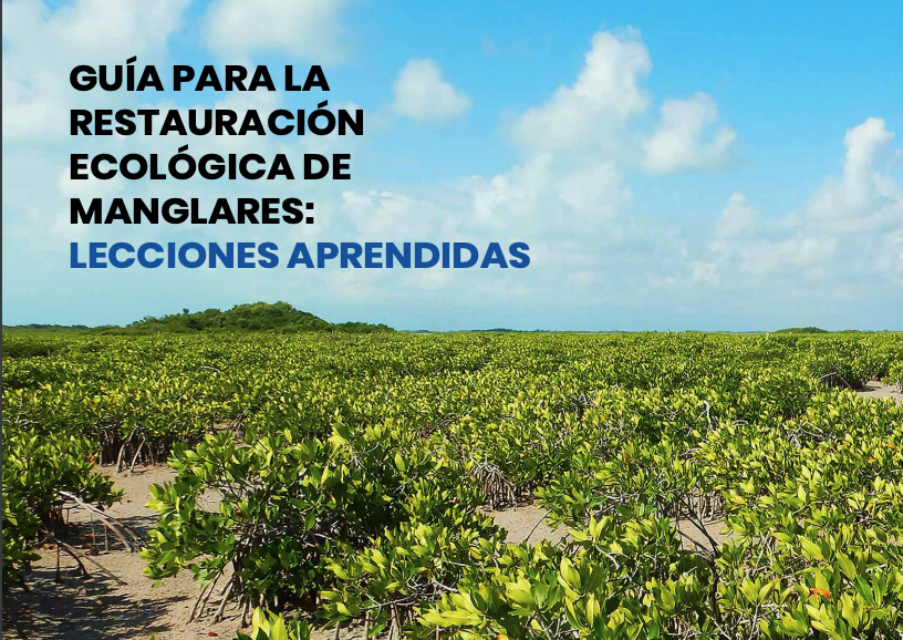 Guía para la Restauración ecológica de manglares: Lecciones Aprendidas