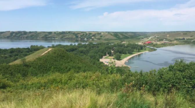 Mundo – Las floraciones de algas se vuelven más intensas y duran más en los lagos del valle de Qu'Appelle: biólogo de la U of Regina (CBC News)