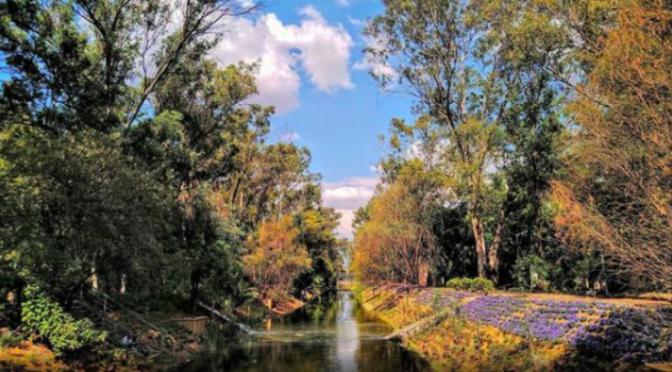 CDMX – Canal Nacional, el río de la CDMX que no está entubado (México Desconocido)